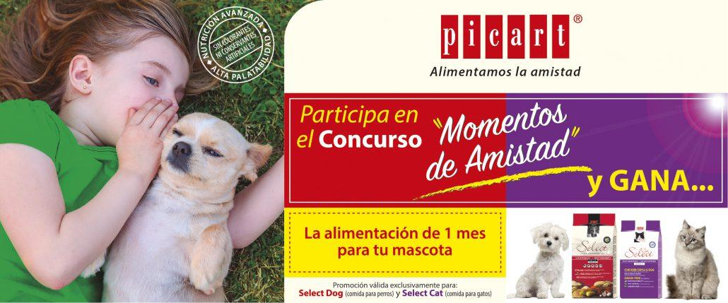 Concurso MOMENTOS DE AMISTAD