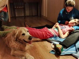 kiko perros de asistencia