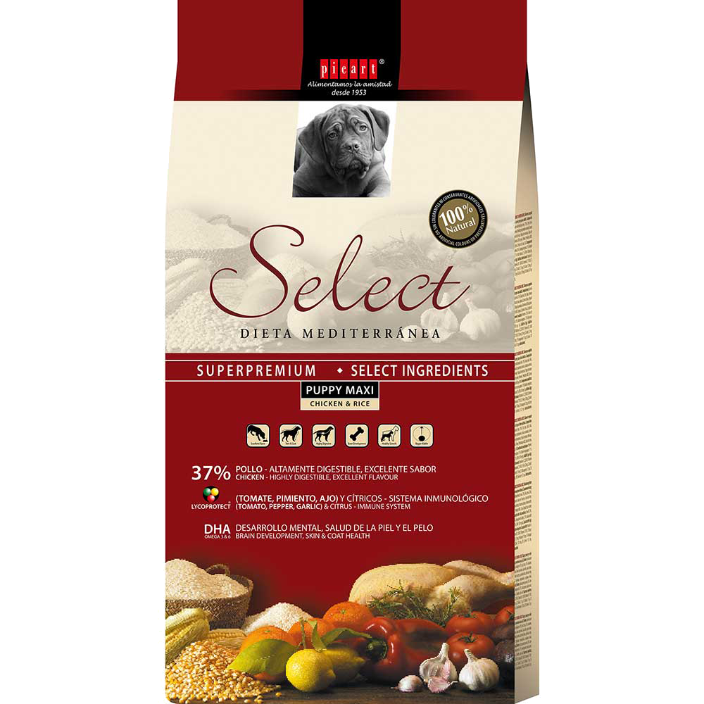 Select Puppy Maxi Puppy Food