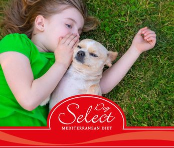 alimento para perros Select Dog