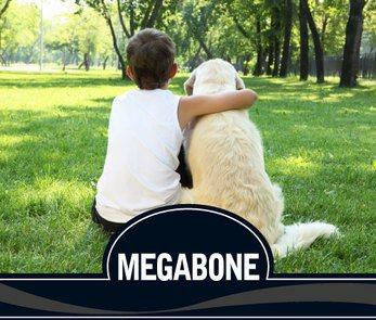 alimento-para-perros-megabone