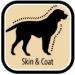 SKIN AND COAT: