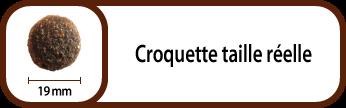 FR_croqueta