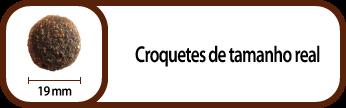 PT_croqueta