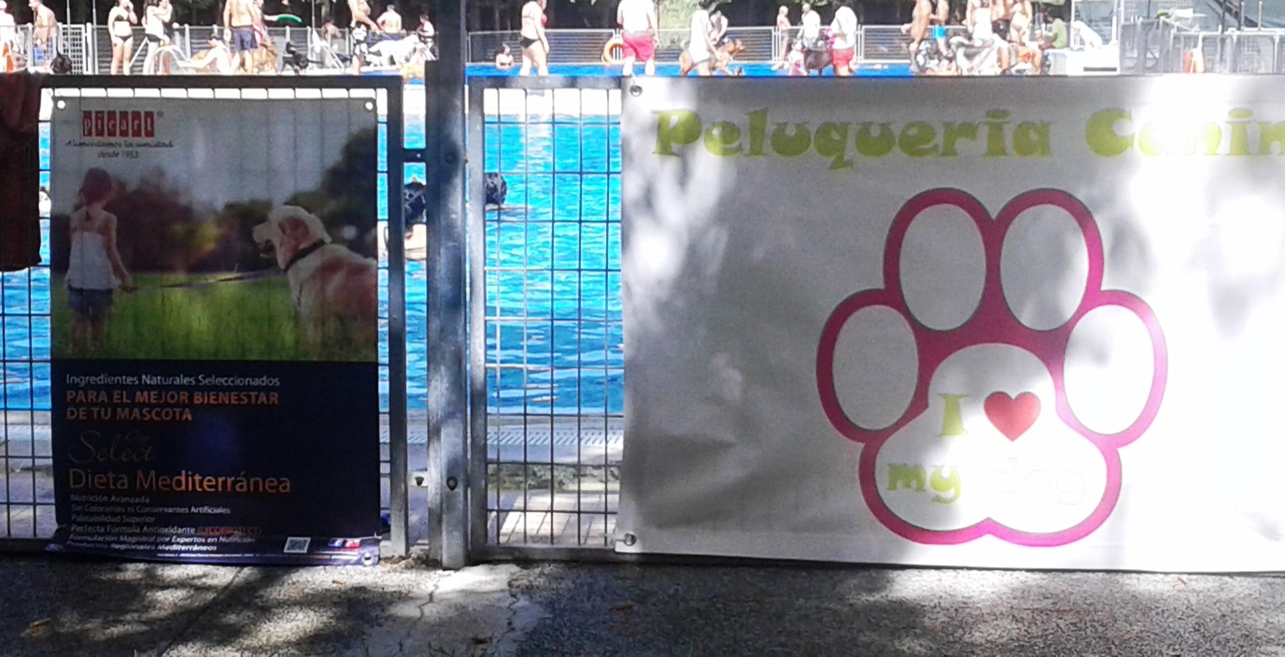 Picart Petcare Colabora En Chapuzón En Las Vegas