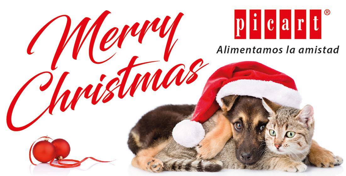 Picart Os Desea ¡Feliz Navidad!