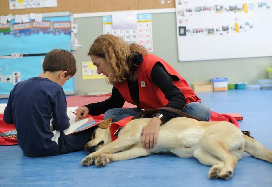 El Papel De Los Perros En La Mejora De Habilidades Lectoras
