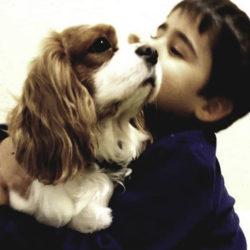 Terapias Con Perros Para Reducir La Exclusión Social
