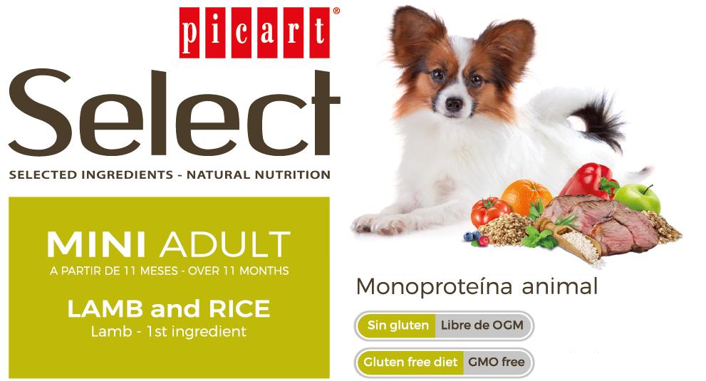 Picart Select Mini Adult Lamb & Rice