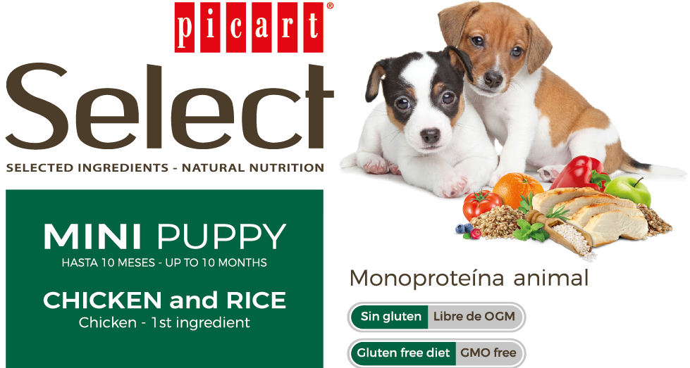 Picart Select Mini Puppy Chicken & Rice