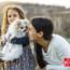 ¿Por Qué Compartimos Nuestra Vida Con Perros De Raza Pequeña?