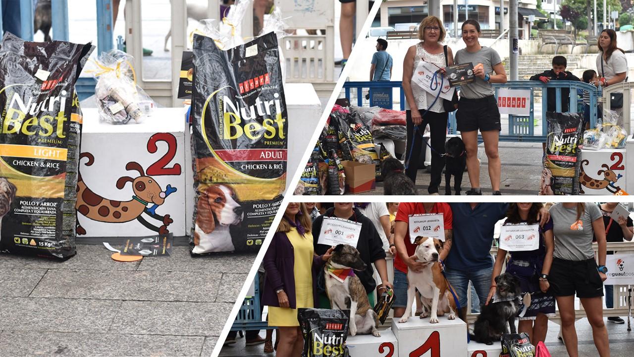 Picart Petcare Colabora Con La Protectora APA SOS Bilbao En El XIII Concurso De Perros Sin Raza