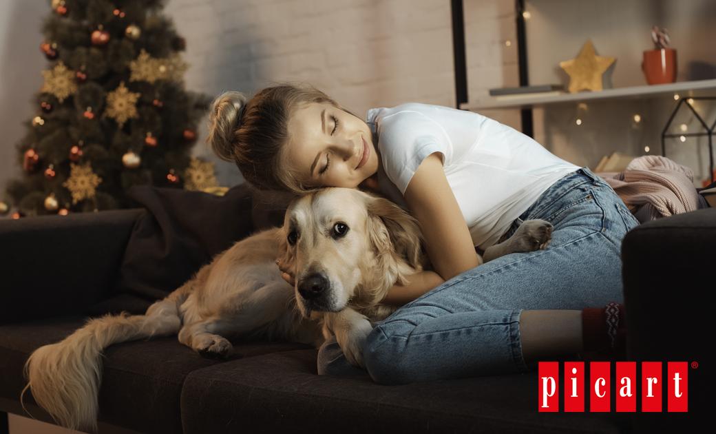 ¡Descubre Los Mejores Destinos Pet-friendly Para Tu Escapada Navideña!