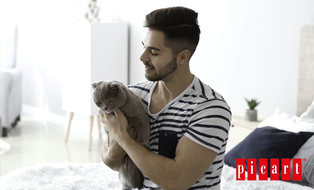 ¿Cómo Hacer Buenas Migas Con Un Gato?