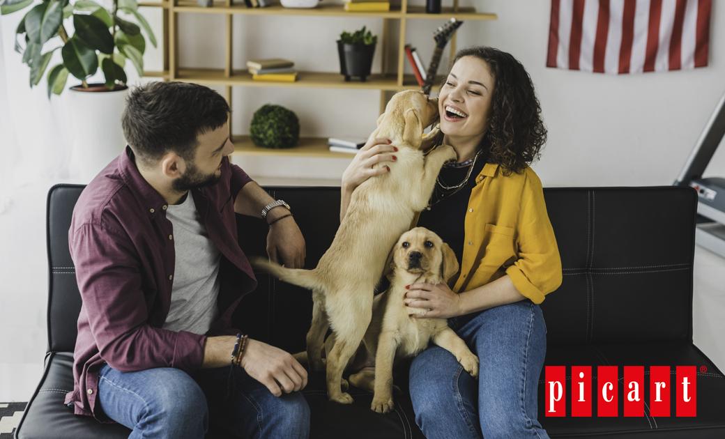 Tips Para Dar La Bienvenida A Un Cachorro